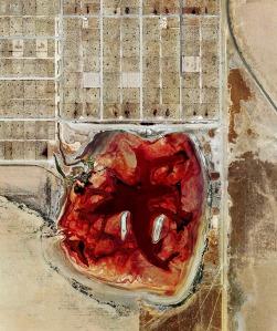 This feedlot lagoon is Coronado Feeders, located in Dalhart, Tex.