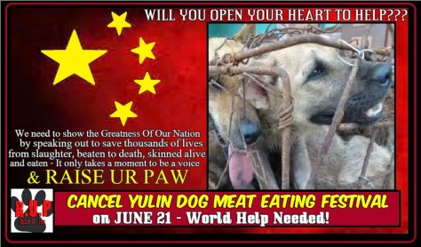 China's government is not censoring the social dialog on Yulin.