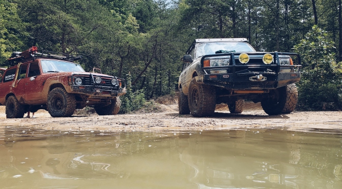 Gettin' Bogged in Pickett State park [Tennessee]